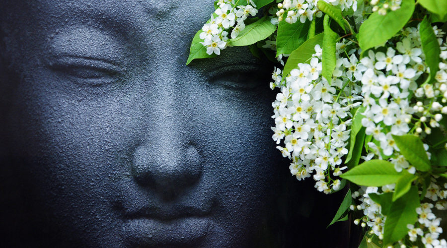 buddha meditating, with white lilacs