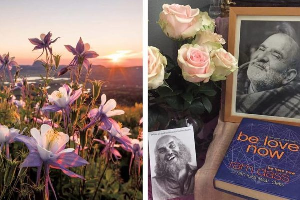 """Spring photo and """"Be Love Now"""" book"""