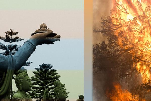 tara buddhas and world on fire